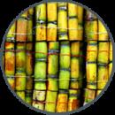Panneau 3d en canne à sucre